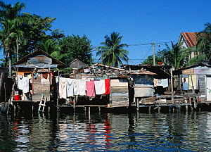 Wooden houses beside Belize city canal, Belize, Central America - Phil Savoie