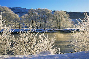 Frost and snow landscape, River Glass, Strathglass, Inverness-shire, UK  -  Duncan Mcewan
