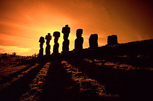 Easter Island landscape with Giant Moai stone statues at sunset, Oceania.  -  George Chan