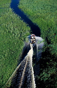 Aerial view of boat transporting locals across Okavango delta Botswana - Christophe Courteau