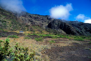 Holua cabin at Haleakala National Park Maui Hawaii USA  -  Photo Resource Hawaii