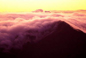 Cloud cover at Haleakala National Park at sunrise Maui Hawaii USA  -  Photo Resource Hawaii