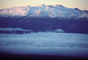 Mauna Kea with snow line taken from Mauna Loa Big Island Hawaii  -  Photo Resource Hawaii