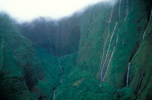 Waterfalls at Waialeale crater wettest spot on earth Kauai Hawaii  -  Photo Resource Hawaii