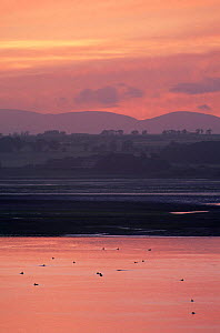 Sunset over Montrose basin estuary, Montrose, Angus, Scotland  -  Niall Benvie