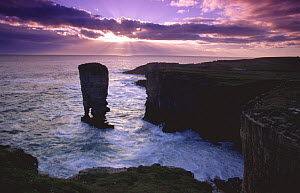 Yesnaby Castle sea stack, Orkney Is, Scotland, UK, at stormy sunset  -  Tim Edwards