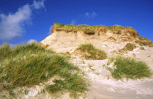 Sand dunes, Eilean na Rubha, North Uist, Outer Hebrides, Scotland, UK - David Kjaer