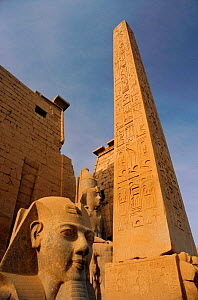Statue of Ramses II, obelisk and hieroglyphs, Luxor, Egypt.  -  Staffan Widstrand