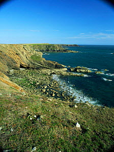 Looking down onto Wooltack Point, Pembrokeshire NP, Wales, UK  -  Tim Edwards