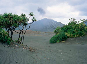 Yasur volcano surrounded with volcanic ash, Tanna, Vanuatu Is, South Pacific, 2003  -  Patricio Robles Gil