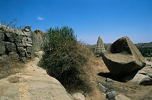 Boulder and Virupaksha hindu temple, Vijaynagar, Hampi, Karnataka, India - Toby Sinclair