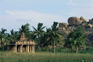 Hindu temple at Vijaynagar, Hampi, Karnataka, India  -  Toby Sinclair