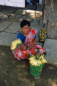 Woman selling bananas outside Virupaksha temple, India, Vijaynagar, Hampi, Karnataka, India - Toby Sinclair