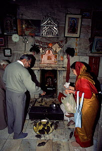 Worhippers with temple rats, Karni Mata temple, Deshnoke, Bikaner, Rajasthan, India  -  Toby Sinclair