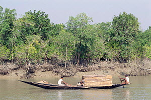 Traditional boat, Sunderbans, West Bengal, India  -  Toby Sinclair