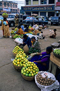Women selling oranges beside road, Mysore, Karnataka, India  -  Toby Sinclair