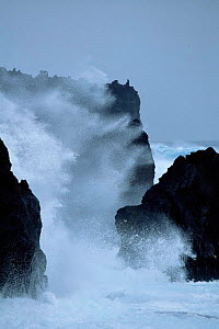 Waves crashing on coast, Marion Is, Prince Edward Is sub-antarctica  -  Ian McCarthy