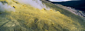 Sulphur fumeroles inside crater of Sierra Negra volcano Isabela Is, Galapagos  -  Pete Oxford