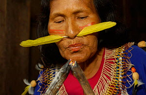 Cofan Indian with feather through nose blowing coals to light fire, Ecuador, Dureno - Pete Oxford