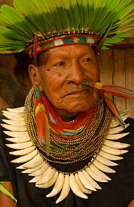 Cofan Indian, traditional dress with parrot feathers + peccary teeth. Ecuador, Dureno - Pete Oxford