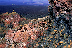 Crater wall of active Chico volcano, Isabella Is, Galapagos  -  Pete Oxford