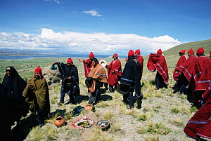 Local people at frog gathering ceremony, Lake Titicaca, Andes, Peru Lake - Conrad Maufe