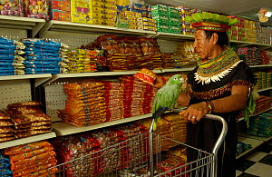 Cofan indian man with pet parrot shopping in Dureno community supermarket, Lago Agrio, Ecuador - Pete Oxford