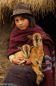Quichua indian child with goats, Casa Condor, Chimborazo, Andes, Ecuador. 2004  -  Pete Oxford