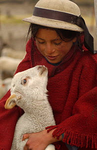 Quichua Indian child with lamb, Chimborazo, Andes, Ecuador. 2004  -  Pete Oxford