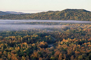 Autumn landscape with mist over woodland, Primorskiy, Siberia, Far east Russia (Ussuriland).  -  Yuri Shibnev