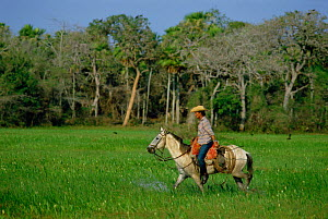Cowboy of the Pantanal, Mato Grosso, Brazil - Luiz Claudio Marigo