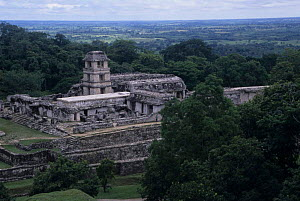The Palace and Observation tower at Palenque archaeological site, Mexico. - Daniel Gomez