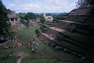 Temple of the Sun / The Palace / Temple of the Cross. Palenque archaeological site, Mexico. - Daniel Gomez