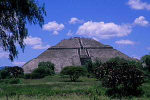 Pyramid of the Sun, Teotihuacan - Aztec archaeological site. Mexico. - Daniel Gomez