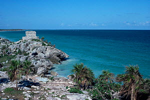 Temple of the Wind on the coast at Tulum, Yucatan, Mexico  -  Doug Perrine