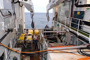 Launching CTD (conductivity, temperature, depth) water sampling equipment from deck of research boat GO Sars. Atlantic ocean deep sea research - David Shale