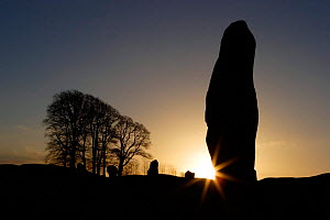 Silhouette stone megalith at Avebury Stone Circle (World Heritage Site), sunrise Avebury, Wiltshire, UK - Michael Hutchinson