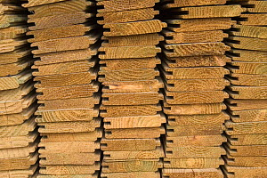 Timber planks and boards ready for transportation, Belgium  -  Philippe Clement