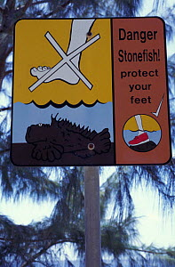 Warning signs of the dangers of stepping  on stonefish {Synanceja sp} along the coast, Christmas Island, Indian Ocean - Jurgen Freund