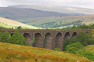Dentdale viaduct, Yorkshire Dales, UK.  -  Gary K. Smith