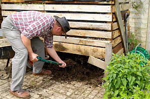 Removing compost from compost bin in an organic garden, UK.  -  Gary K. Smith