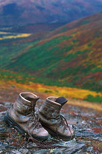 Hiking boots drying out in tundra, Denali NP, Alaska, USA. - Philippe Clement