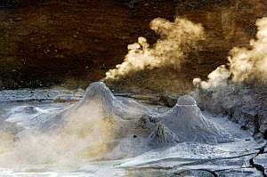 Small cones emitting steam from the depths of the Caldera Uzon Volcano, Kronotsky Zapovednik Reserve, Russia.  -  Igor Shpilenok