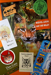 Paper products featuring European lynx , reintroduction project in Harz Mountains NP, Germany.  -  Niall Benvie