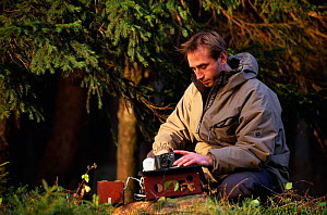 Biologist Ole Anders setting camera trap for recording European lynx (Lynx lynx), Harz Mountains NP, Germany.  -  Niall Benvie