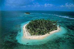 Aerial view of island with coconut palms, San Blas, Panama, Caribbean Sea  -  Michael Pitts