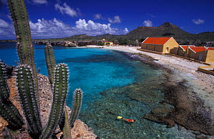 Boca Slagbaai, Bonaire, with woman snorkeling in shallows, Caribbean Sea.  NOT FOR SALE IN THE USA  -  Brandon Cole