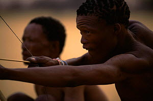 Jo / Hoan bushman with bow and arrow, Bushmanland, Namibia. 1996  -  Owen Newman