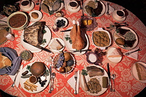 Collection of rocks that look like food items, arranged on dinner plates  -  John Cancalosi