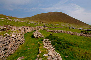 Stone brick walls and buildings, Hirta,Saint / St Kilda Island, Western Islands, Outer Hebrides, Scotland. - Dan Burton